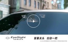 关键时候拉你一把-EyeSight篇
